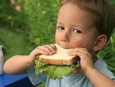 ילד אוכל כריך בגינה ולידו אקטימל