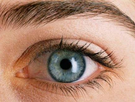 עין כחולה (צילום: jupiter images ,jupiter images)