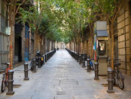 סמטה עם עצים ועמודים לאורכה ברובע הגותי בברצלונה