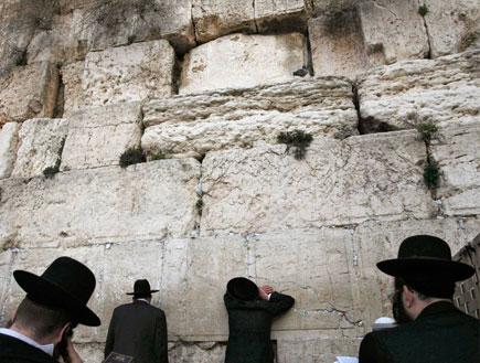 חרדים מתפללים בכותל המערבי בירושלים (צילום: רויטרס ,רויטרס)