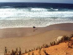בחור עם גלשן על קו המים בחוף בית ינאי