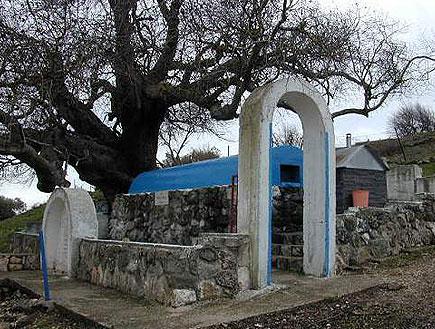 קבר רבי טרפון(יחסי ציבור)