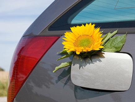 פרח על מכסה טנק הדלק (צילום: istockphoto)