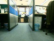 פיטורים במשק: איפה הכי כדאי לעבוד