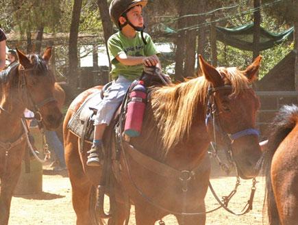 טיולי משפחות: רוכבים על סוסים בחוות יער