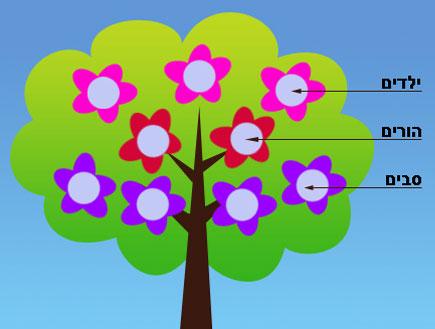 עץ משפחה