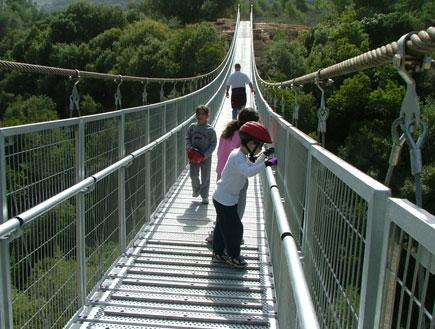 טיולי משפחות: הגשר בנשר