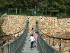 טיולי משפחות: גשר החבלים בפארק נשר