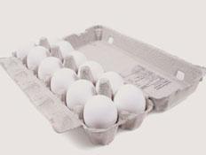 קרטון ביצים