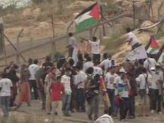 פלסטינים מפגינים. ארכיון
