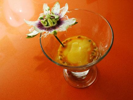 סורבה פסיפלורה ושוקולד לבן (צילום: עמרי אנדרס צורף ,mako)