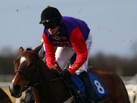 הסוסה מונליט פאת' (צילום: Daily Mail)