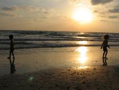 חוף סידני עלי