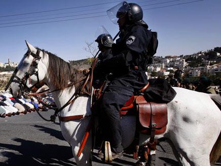 פרשי משטרה (צילום: אי-פייי)