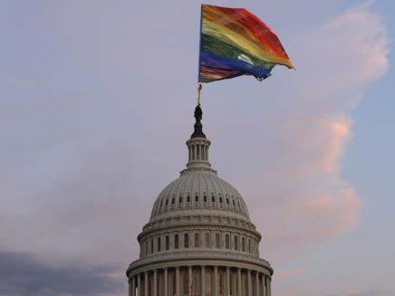 שאלה חוקית על גאווה (צילום: חדשות 2 ו AP)