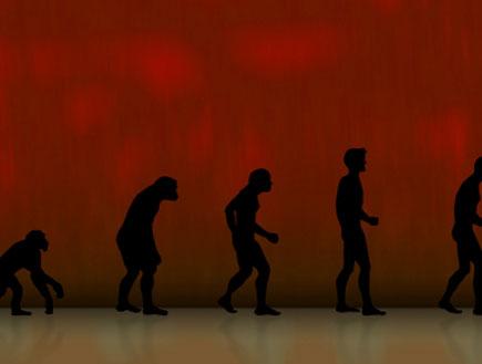 קוף אחרי בנאדם (צילום: istockphoto)