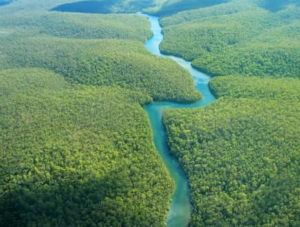 נהר האמזונס - נהרות סוערים (צילום: istockphoto)