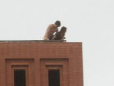 סקס על הגג