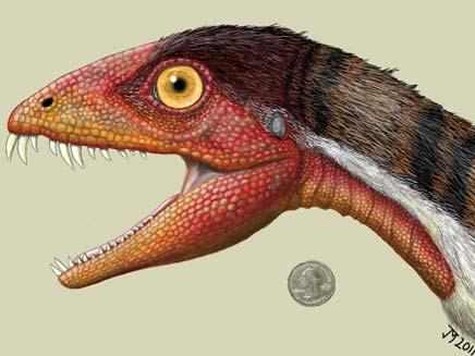דימונוזאורוס צ'אוליאודוס (צילום: AP)