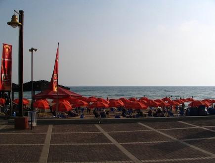 חוף דדו חיפה- באדיבות המשרד להגנת הסביבה