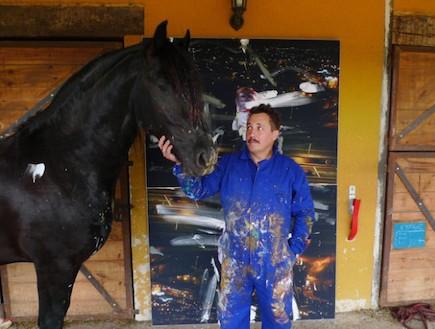סוס מצייר (צילום: צילום מסך ,mako)