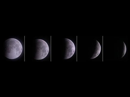 הכינו את הטלסקופים (צילום: AP)