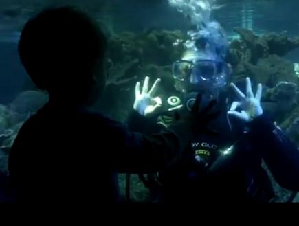 כיפאק לצוללנית (צילום: צילום מסך)