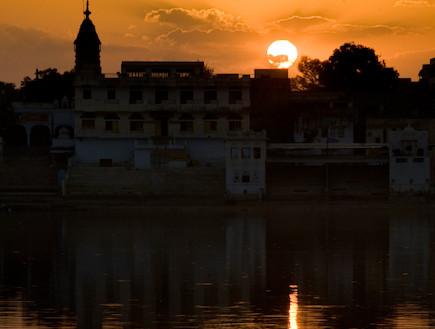 פושקר הודו (צילום: istockphoto ,istockphoto)