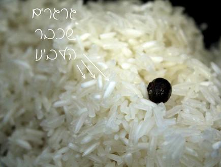 אורז 6
