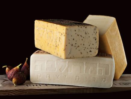 גבינות של בית יצחק (צילום: יחסי ציבור ,יחסי ציבור)