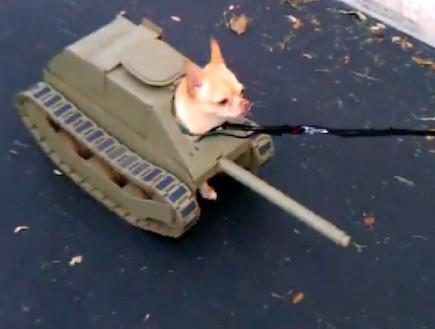 טנק מרכלבה 3