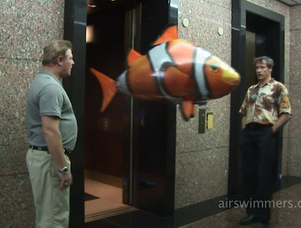 הלהיט הבא: דג על שלט