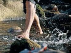 הליכת מים - צכיה ההיפר אקטיבית