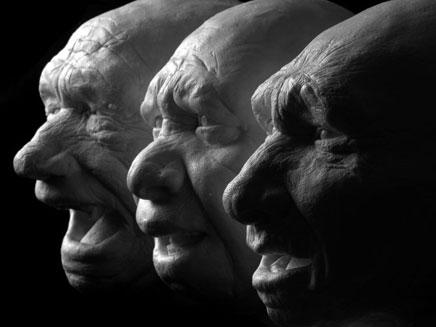 """תערוכה חדשה מציגה את אבות הגזע האנושי (צילום: יח""""צ)"""