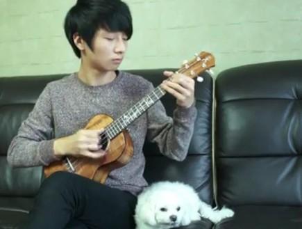 נער מנגן סטיבי וונדר (צילום: מתוך youtube)