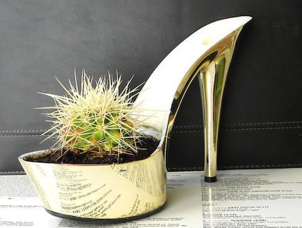 גינה ירוקה. נעל עציץ זהב