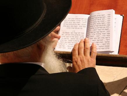 חרחרדי קורא בספר תורה (צילום: אימג'בנק / Thinkstock)