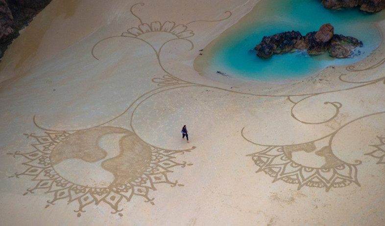פרחים על החול (צילום: צילום: Andres Amador)