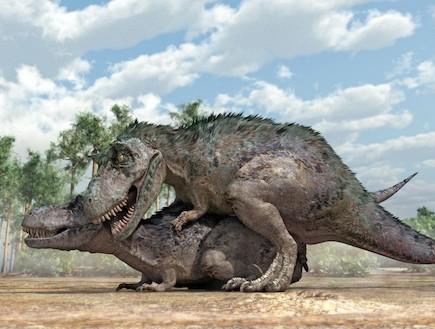 דינוזאורים מזדווגים (צילום: huffingtonpost.com)