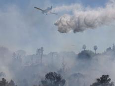 בתים שעלו באש היום בקרית טבעון (צילום: דניאל רולידר)