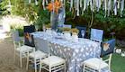 שולחן חג-כיסאות כוחל לבן בעיצוב שלומי ומוליק (צילום: ליאור קסון)