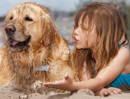 הכלב של המדינה מדור 3 (צילום: אימג'בנק / Thinkstock)