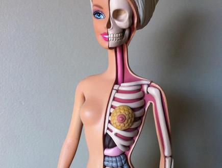 האנטומיה של ברבי (צילום: moistproduction.com)