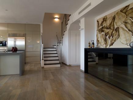 כניסה וסלון (צילום: שי בן אפרים)