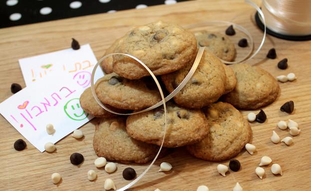 עוגיות שוקולד צ'יפס (צילום: אסתי רותם ידידיה ,אוכל טוב)