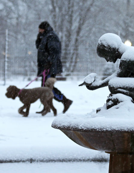 """שלג, סופה, צפון ארה""""ב, אמריקה (צילום: AP)"""
