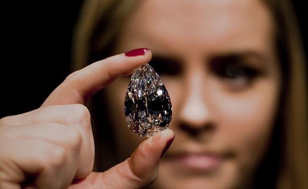 היהלום המושלם הגדול בעולם (צילום: dailymail.co.uk)