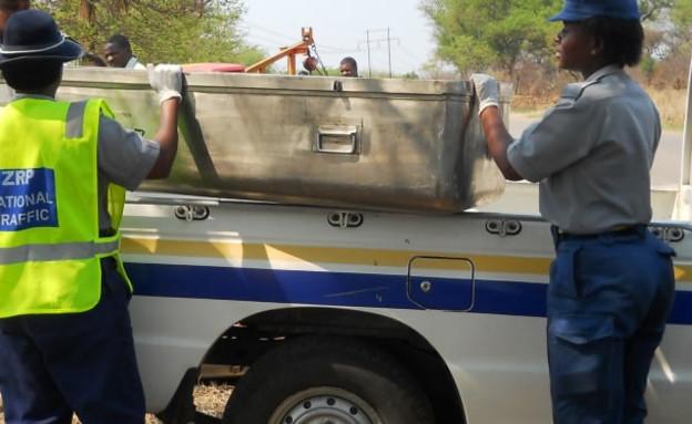 פרוצה התעוררה לחיים (צילום: bulawayo24)