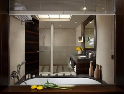 דן כרמל חדר אקזקיוטיב - אמבטיה