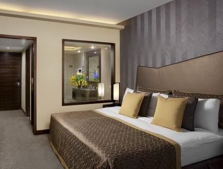 מלון דן כרמל החדש חדר